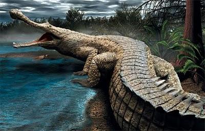 Sarcosuchus2 8 Binatang Terbesar Sepanjang Sejarah
