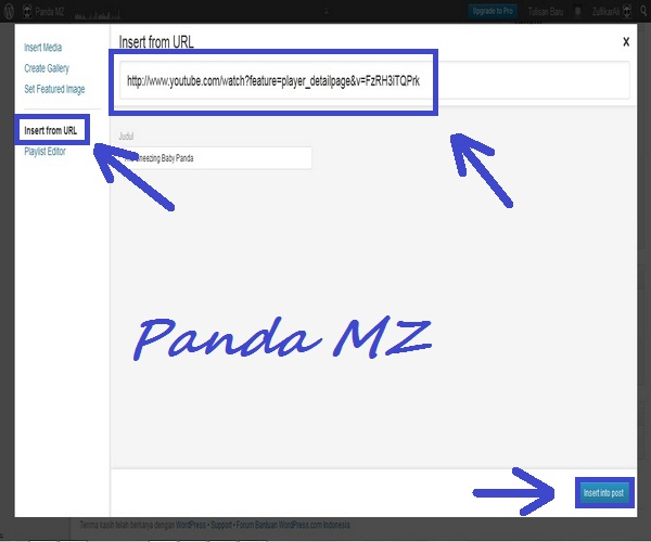 Insert URL
